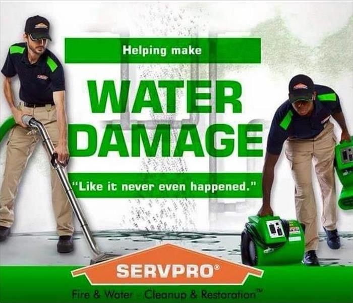 Water Damage Moline, Rock Island, East Moline, and Milan Residents: We Specialize in Flooded Basement Cleanup and Restoration!