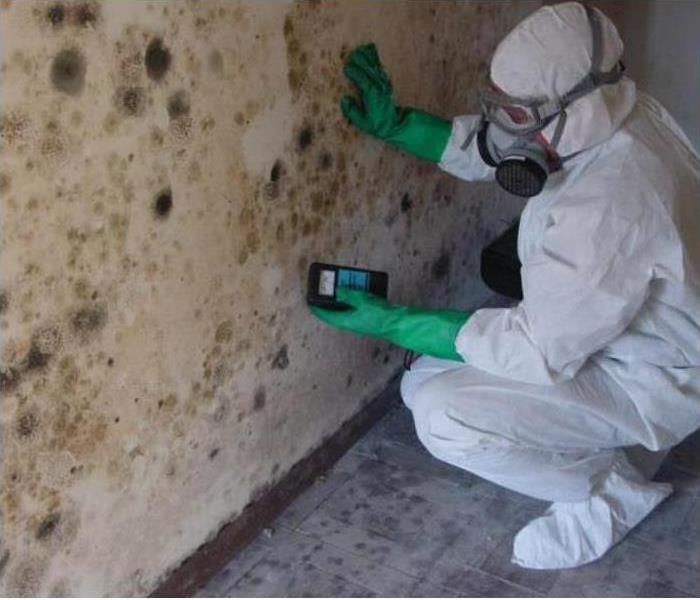 Mold Remediation What is the mold remediation process?