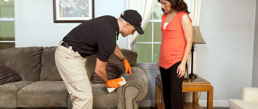 Moline, IA carpet upholstery cleaning