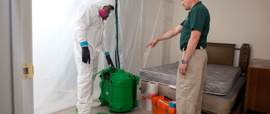 Moline, IA mold removal process